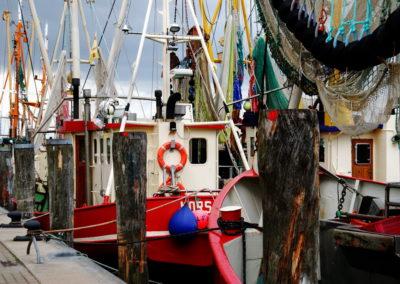 Fischerboote in Greetsiel - Foto © Katharina Hansen-Gluschitz