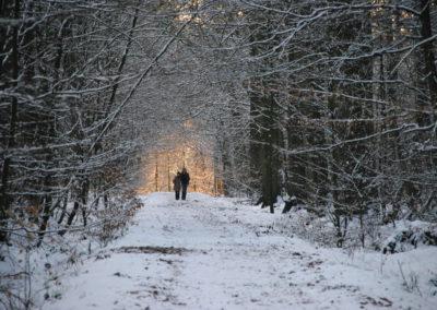 Freizeit im Wald - Foto © Katharina Hansen-Gluschitz